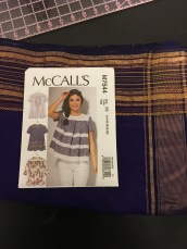 McCall's 7544 and Silk Sari
